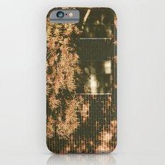 autumn tree, shadow iPhone 6 Slim Case