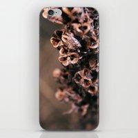 Dry Live iPhone & iPod Skin