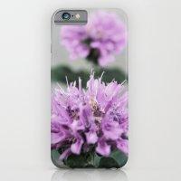 iPhone & iPod Case featuring Porcupine Purple by Casey VanderMeulen