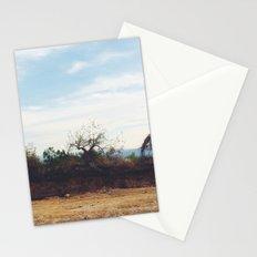 Cuernavaca. México. Stationery Cards