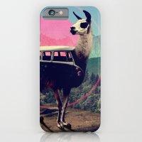 man iPhone & iPod Cases featuring Llama by Ali GULEC