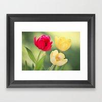 Red & Yellow Tulips Framed Art Print