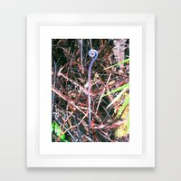 Tree Fern Curl Framed Art Print