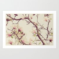 Blossoms And Branches Art Print