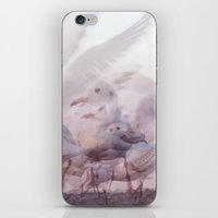 SONGS OF BIRDS   White Seagulls iPhone & iPod Skin