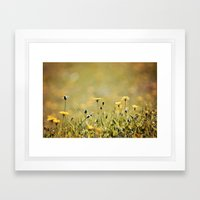 Yellow Wildflowers in the Sun Framed Art Print