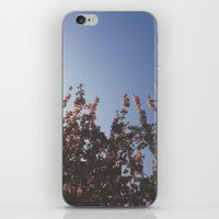Ever Growing iPhone & iPod Skin