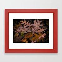 Shapes and Patterns of Leaf Art on Wabasis Lake in Southwest Michigan Framed Art Print