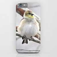 Winter Bird  iPhone 6 Slim Case