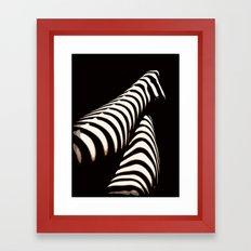 Zebra Gams Framed Art Print
