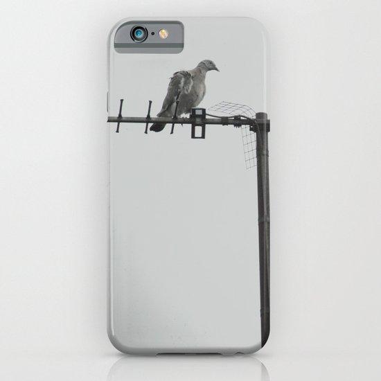bird... iPhone & iPod Case