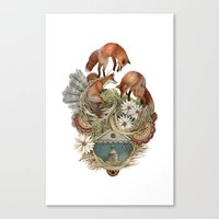 House of Fox // Polanshek Canvas Print
