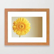 Sunshine and lollipops  Framed Art Print