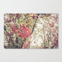 Berries Canvas Print