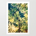 Vintage trees Art Print