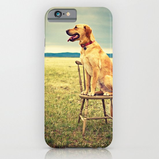 DogOnChair iPhone & iPod Case