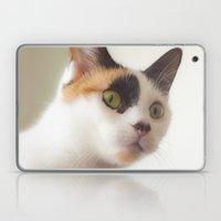Investigation Mode Laptop & iPad Skin