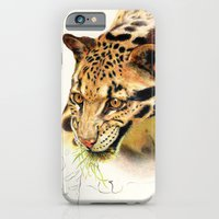 iPhone & iPod Case featuring Clouded Panther by maxandr