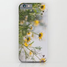 Under the light iPhone 6 Slim Case