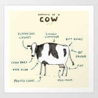 Anatomy Of A Cow Art Print