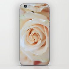 Soft to Touch iPhone & iPod Skin