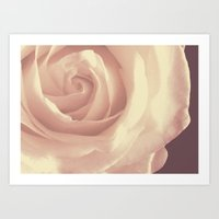 Roses Are White Art Print