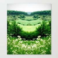 Cow Parsley Valley Canvas Print
