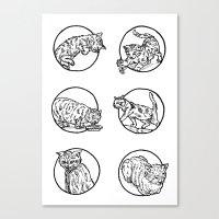 Cat Lyf Canvas Print