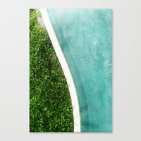 Reversal Canvas Print
