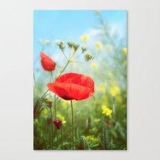 Technicolour Poppy Canvas Print