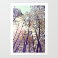 Aboveness  Art Print