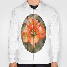 Orange Blossoms Hoody