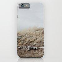 Winded Skeleton iPhone 6 Slim Case