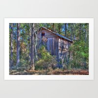 Barn Hiding In The Woods Art Print