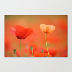 Two poppies 1873 Canvas Print