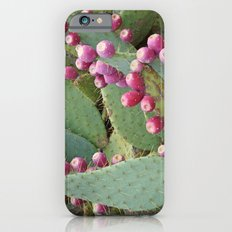 Desert Fruit iPhone 6 Slim Case