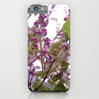 iPhone & iPod Case featuring Lilacs by ArtRaveSuperCenter: Ave Hurley Illustrat
