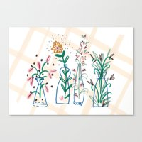 Flowers. Vase, Illustrat… Canvas Print