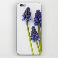 Muscari - Blue Grape - J… iPhone & iPod Skin