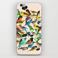 Chirp Chirrup iPhone & iPod Skin