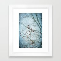 Snowberry Framed Art Print
