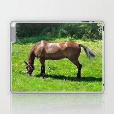 A Grazing Horse Laptop & iPad Skin