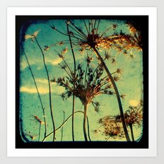 Head in the Clouds - Through The Viewfinder (TTV) Art Print