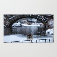 Snow in Central Park IX Canvas Print