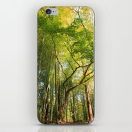 Greenish Tree iPhone & iPod Skin