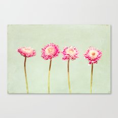 Flowers Two by Two Canvas Print
