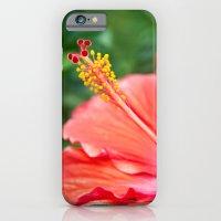 Tropical Bloom iPhone 6 Slim Case