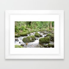 Windermere Creek Framed Art Print