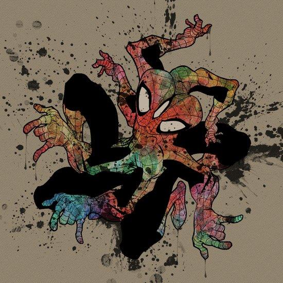 the Spider-man Canvas Print