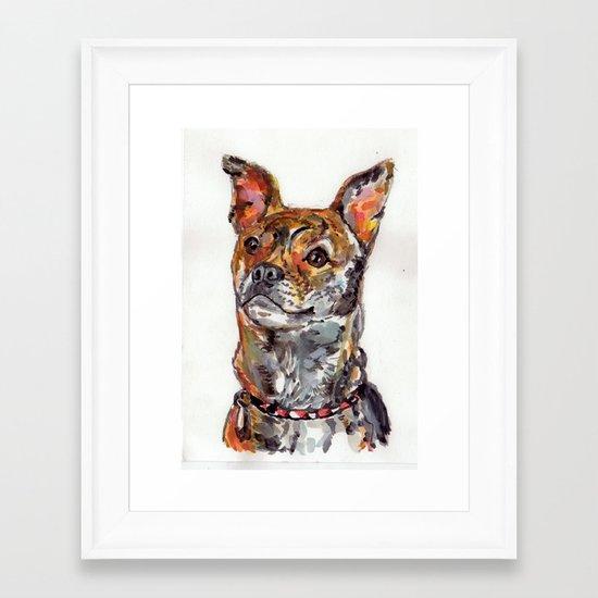 Sweet Mixed Breed Pup Framed Art Print